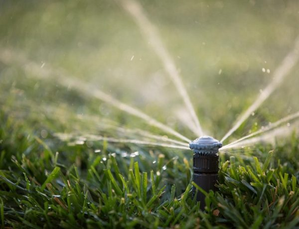 Irrigation Blow Out