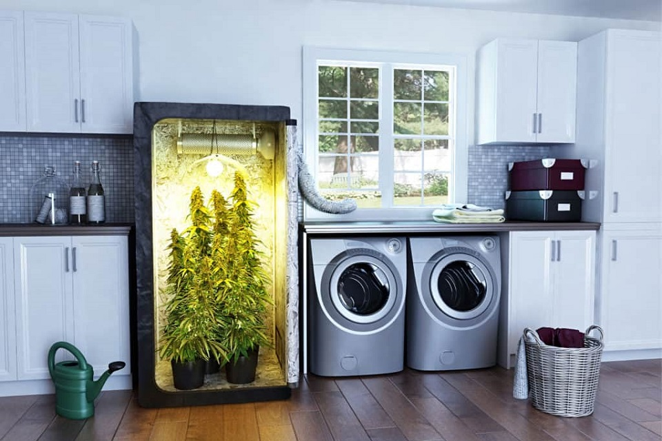 Stealth Grow Boxes